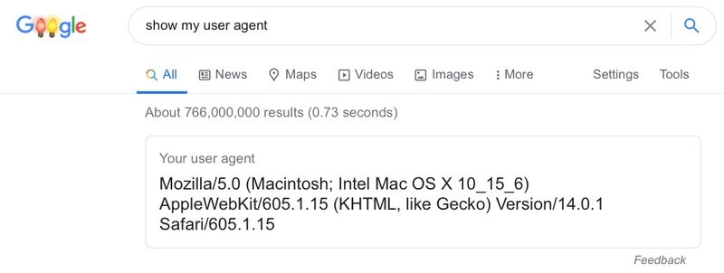 Google search showing the user agent of Safari on an iPad running iPad OS 14.2
