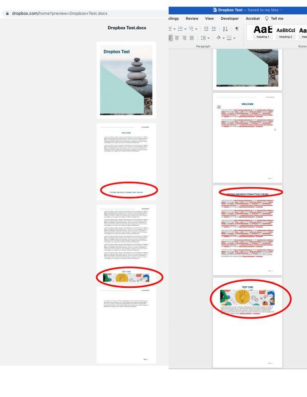 Dropbox Test copy.jpg