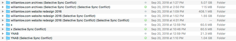 screenshot with Selective Sync Conflicts